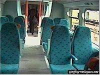 Interior of new class 334 at Polmadie Depot Open Day.<br><br>[Jeffray Wotherspoon&nbsp;//]