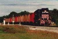 Train heading south at Sebastian.<br><br>[Ewan Crawford&nbsp;//]