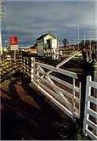 Looking east at Forres signalbox and level crossing.<br><br>[Ewan Crawford&nbsp;//]