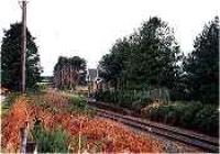Looking west at the former Orbliston Junction station.<br><br>[Ewan Crawford&nbsp;//]