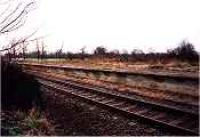 Looking west at the disused Conon station platform.<br><br>[Ewan Crawford&nbsp;//]