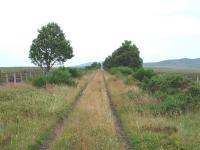The trackbed looking towards Dava. The area is very bleak, the remains of snow fences here are approximately two miles long and are both sides of the trackbed. July 2006<br><br>[John Gray&nbsp;/07/2006]