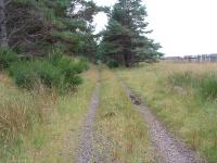 Dava Moor. Trackbed looking south. Snow fence on right. July 2006<br><br>[John Gray&nbsp;/07/2006]