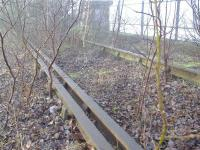 Near to Dalmarnock Station below a section of track suddenly appears complete with Check Rail.<br><br>[Colin Harkins&nbsp;04/02/2006]