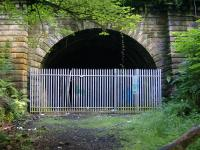 Entrance to the tunnel leading to Botanic Gardens from Kirklee. <br><br>[Colin Harkins&nbsp;09/07/2006]