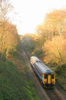 Felbrigg Cutting near Roughton Road. <br><br>[Ian Dinmore&nbsp;//]