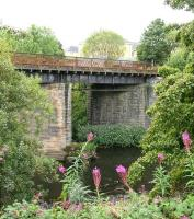 Section of the L&D viaduct over the River Kelvin in 2006 looking south through a gap in the Rose Bay Willow Herb.<br><br>[John Furnevel&nbsp;02/08/2006]