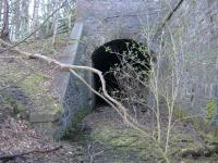 Disused Tunnel going under Innerleithen Rd.... This Tunnel is infilled at the opposite end<br><br>[Colin Harkins&nbsp;/03/2006]