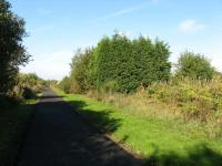 Dunfermline, Whitemyre Junction looking west.  The West of Fife Mineral Railway diverged to the right here, its formation lies directly behind the leylandii trees in the centre.  The main line now forms the West of Fife Cycle Way.<br><br>[Mark Poustie&nbsp;23/09/2006]