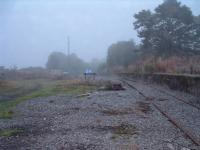 What is left of the goods yard at Ardgay. Overgrown platforms and rusty sidings. 16/10/06<br><br>[John Gray&nbsp;16/10/2006]
