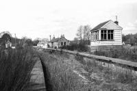 A view west at Carron of the station building, platforms and signalbox on 18 April 1977 with the track missing and the vegetation taking hold.<br><br>[John McIntyre&nbsp;18/04/1977]