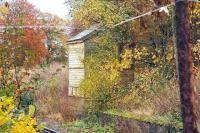 In November 2006 the old signal box can still be seen through the shrubbery at the east end of the former Pitcaple station.<br><br>[John Furnevel&nbsp;08/11/2006]