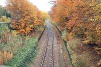 Autumn at Pitcaple in November 2006. Looking east from the road bridge over the platform remains. The side of the signal box can just be seen in the background.<br><br>[John Furnevel&nbsp;08/11/2006]
