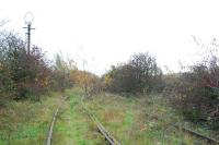 The largest pre-war yard in Europe reverts slowly to nature. Much of the yard is now an industrial estate and the GNRs route north is lifted beyond Gedling.<br><br>[Ewan Crawford&nbsp;15/11/2006]