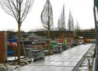 Tree lined pedestrian entrance to Alloa station taking shape on 8 February 2007.<br><br>[John Furnevel&nbsp;08/02/2007]