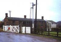 The old abandoned station at Scruton, between Northallerton and Leeming Bar, in 1982. View south over the level crossing.<br><br>[John McIntyre&nbsp;//1982]