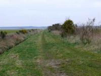 View West to Tayport from the Rhynd Farm Crossing. Line closed 1955.<br><br>[Brian Forbes&nbsp;25/03/2007]