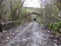 Looking back towards the tunnel at Bridgeton. Trees and rubbish are the only things adorning the platforms. This station cut deep into the surrounding land.<br><br>[Colin Harkins&nbsp;29/03/2007]