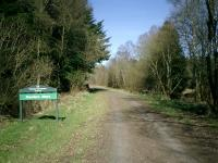 Strathendrick & Aberfoyle Railway, now a walk through the Flanders Moss Forest.<br><br>[Alistair MacKenzie 04/04/2007]