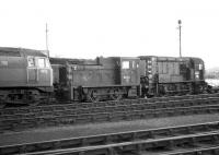 Ferryhill with 1632, D2444 and D3877 in the locomotive sidings. C. 1974.<br><br>[John McIntyre&nbsp;//1974]