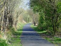 Trackbed looking east to Elderslie from Cart Junction, now part of the Cycle Network.<br><br>[Graham Morgan&nbsp;12/04/2007]