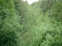 The trackbed of the former Caledonian Railway Lanarkshire and Dumbartonshire line, looking west from Beardmore Street bridge in May 2007.<br><br>[Alistair MacKenzie&nbsp;04/05/2007]