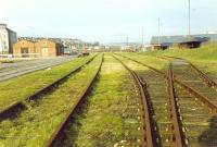 Last tracks in the Methil Docks about time of closure. This yard sat between docks 2 and 3. View looks to Kirkland. The (then) recently lifted line between Methil and Kirkland is off to the left beyond the buildings.<br><br>[Ewan Crawford&nbsp;/11/1989]