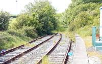 End of the line. Looking west from the platform at Stranraer Town in May 2007, with the former route through to Portpatrick disappearing into the undergrowth. In amongst the trees is the road bridge at the south end of Victoria Place.<br><br>[John Furnevel&nbsp;31/05/2007]
