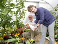 Volunteers Sheena and Bill Stevenson pictured on 4 August in one of the Wemyss Bay Station Garden polytunnels.<br><br>[First ScotRail&nbsp;04/08/2011]
