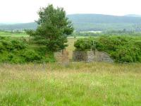 Remains of a bridge on the disused line between Craigellachie and Boat of Garten.<br><br>[John Gray&nbsp;13/07/2007]