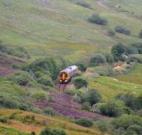 Inverness train southbound through the heather in Strathfleet in the summer of 2007.<br><br>[John Furnevel&nbsp;27/08/2007]