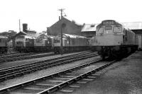 Lineup at Ferryhill MPD in 1974.<br><br>[John McIntyre&nbsp;//1974]
