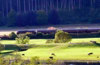 <I>Royal Scotsman</I> passing Dalguise on 4 October, taken from east of the River Tay.<br><br>[Brian Forbes&nbsp;04/10/2007]