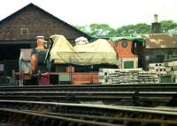 The 3 ex-Aberdeen Gasworks steam locomotives grounded at Ferryhill shed in 1974 within the compound being used at that time by the Aberdeen Corporation Parks Department. Nearest the camera is No 3 undergoing restoration work. This locomotive is now a permanent exhibit outside the Grampian Transport Museum, Alford. [see image 12565] <br><br>[John McIntyre&nbsp;/04/1974]