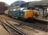 Deltic 55007 <I>Pinza</I> stands at Newcastle Central on 11 July 1981 with the last leg of 1S27 Plymouth - Edinburgh Waverley.<br><br>[Colin Alexander&nbsp;11/07/1981]