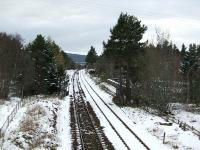 The passing loop at Moy in March 2008. The remains of the station platforms are just beyond the two large trees in the centre of the photograph.<br><br>[John Gray&nbsp;25/03/2008]