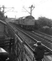 The SRPS special 'The West Highland Express' from Falkirk to Mallaig on 04 August 1973 at Geilston level crossing west of Cardross. The coach next to the engine is the preserved CR brake composite.<br><br>[John McIntyre&nbsp;04/08/1973]