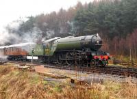 4771 <I>Green Arrow</I> with a train near Levisham on the NYMR on 30 March.<br><br>[Peter Todd&nbsp;30/03/2008]