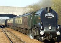 <I>The North Briton.</I> 60009 <I>Union of South Africa</I> pulling 12 coaches at Carmyle on 15 April.<br><br>[Colin Harkins&nbsp;15/04/2008]