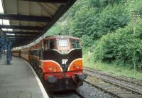 CIE 080 stands with a train at Waterford in 1993.<br><br>[Bill Roberton&nbsp;//1993]