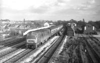 A rare scene on the ex-Great Central route at Sudbury and Harrow Road in the London suburbs in the 1960s. Maroon WR <I>Warship</I> D844 <I>Spartan</I> heads north with the 13.25 London - Birmingham service operating, on this occasion, from Marylebone as opposed to the normal Paddington. [Thanks to all respondents - with a special thank you to Martin Smith, Robert Heron and Dave Winter of the Great Western Society for their help in finally nailing this one.]<br><br>[Robin Barbour Collection (Courtesy Bruce McCartney)&nbsp;//]
