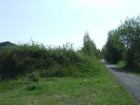 Looking east towards Elderslie West Junction on 14th May. This is the remains of embankment that ran down the hill from Elderslie West Junction to Cart Junction. To the right is the cycle path the runs in places parallel to and in places along the trackbed from Elderslie to Greenock<br><br>[Graham Morgan 14/05/2008]