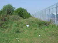 Looking west towards Cart Junction on 14th May. This is the remains of embankment that ran down the hill from Elderslie West Junction to Cart Junction. To the right is the fence of the WH Malcolm Logistics depot in Linwood<br><br>[Graham Morgan&nbsp;14/05/2008]
