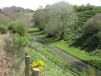 Maggie Bowies Glen on the Waverley Route, looking southeast from a viewpoint near the top of Borthwick Bank in May 2008. From here the trackbed takes a wide sweep round to the right, heading in the general direction of Tynehead Station.<br><br>[Mark Poustie&nbsp;05/05/2008]
