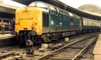 Gateshead Deltic 55011 <I>The Royal Northumberland Fusiliers</I> at Newcastle Central platform 8 on 20 June 1981 with the 1V93, Edinburgh-Plymouth.<br><br>[Colin Alexander&nbsp;20/06/1981]