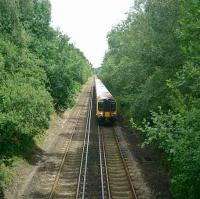 EMU North of Brockenhurst in the New Forest on the London - Dorchester line.<br><br>[Alistair MacKenzie 24/06/2008]