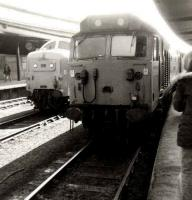 50039 <I>Implacable</I> brings the 1S27 Plymouth - Edinburgh train into York platform 15 on 14 April 1981. Standing ready to take over the train for the York - Edinburgh leg is Deltic 55015 <I>Tulyar</I>.  <br><br>[Colin Alexander&nbsp;14/04/1981]