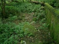 Blane Valley - Remains of Campsie Glen Station site next to entrance to former Lennox Castle Hospital (LCH).<br><br>[Alistair MacKenzie 15/07/2008]