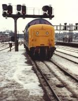 Deltic 55009 <I>Alycidon</I> backing onto the stock of train 1M69 Newcastle - Liverpool at York on a wintry 27 December 1981. This was supposedly the last run of a Deltic to Liverpool - not so!<br><br>[Colin Alexander&nbsp;27/12/1981]