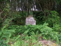 Hidden in the undergrowth, a chimney stack is all that remains of Killin Junction West signal box.<br><br>[John Gray&nbsp;23/07/2008]